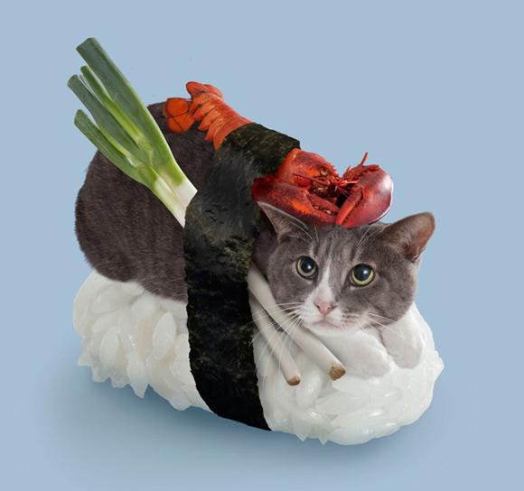 neko sushi 01