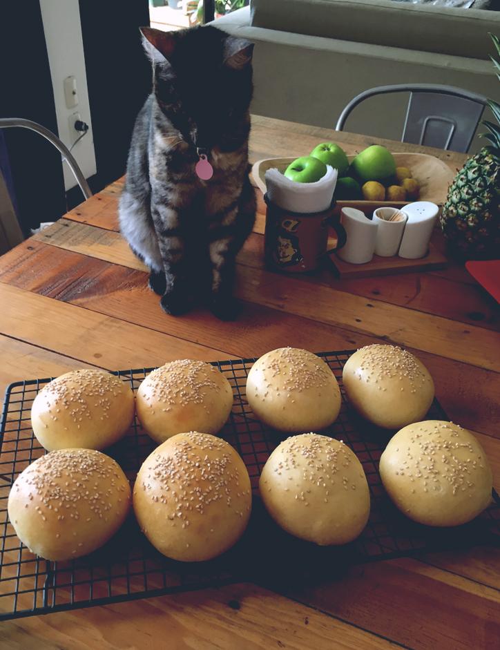 hamburguesa, pan, sandwich, masa